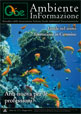 rivista_aigae_giugno2014_copertina