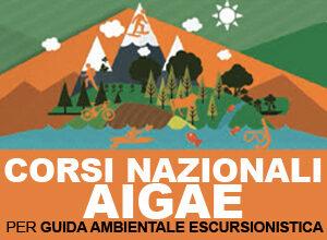 banner-corsi_aigae