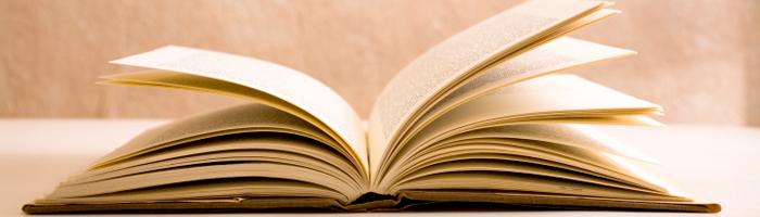 Presentazione libro gufi