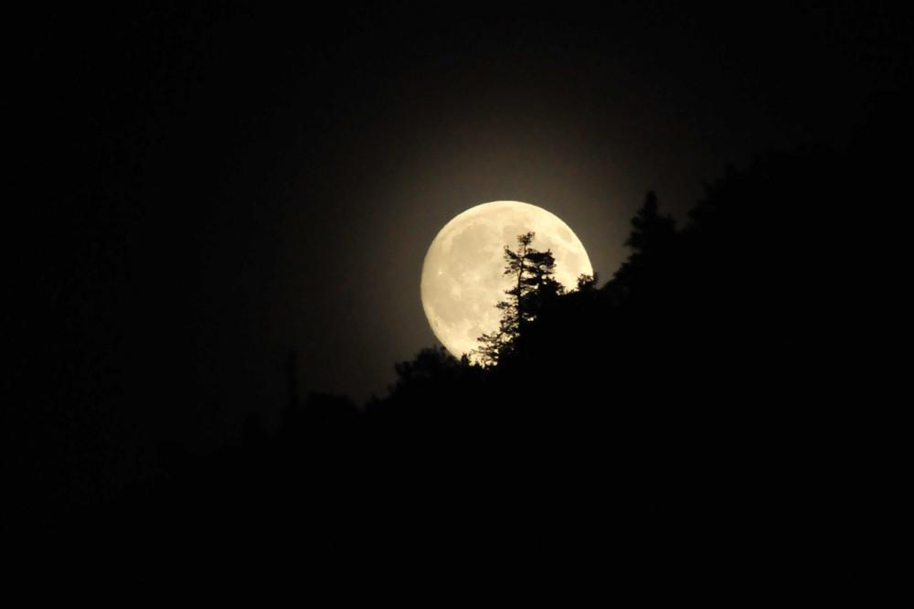 Francigena by night il Parco di Vejo