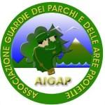 Logo AIGAP