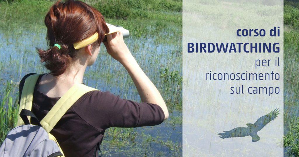riconoscimento uccelli e rapaci