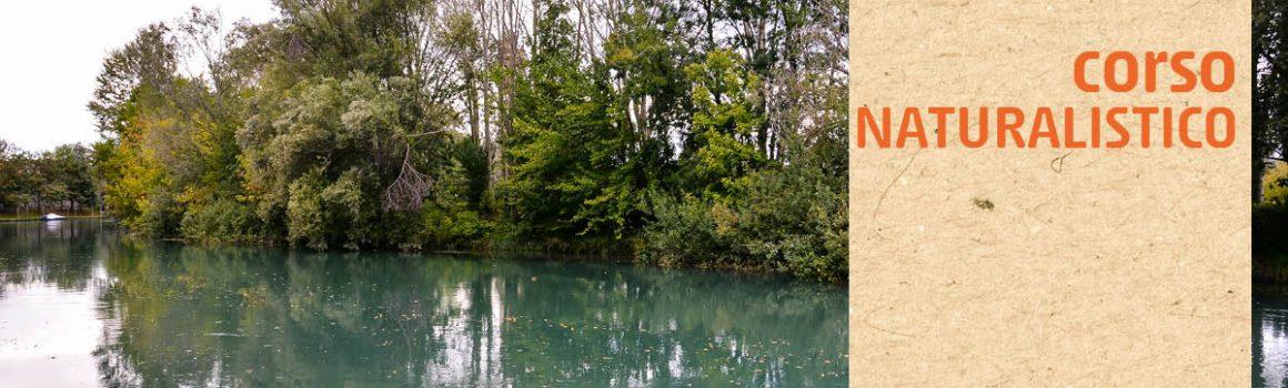 ambienti acquatici, fiumi, parco naturale