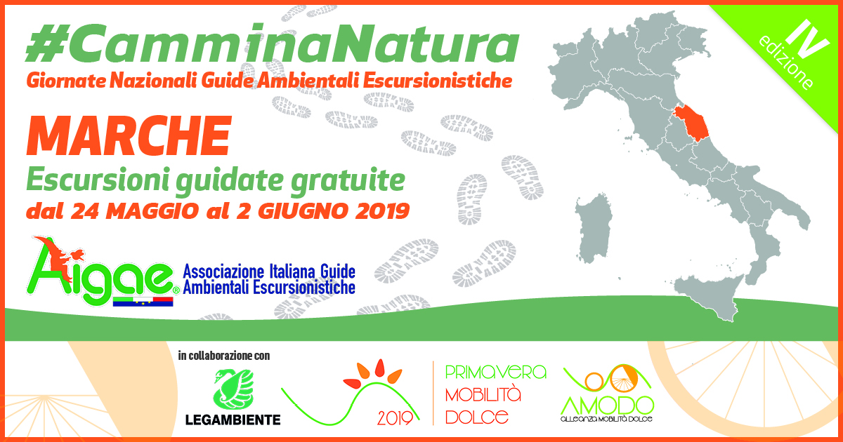 MARCHE CAMMINANATURA2019